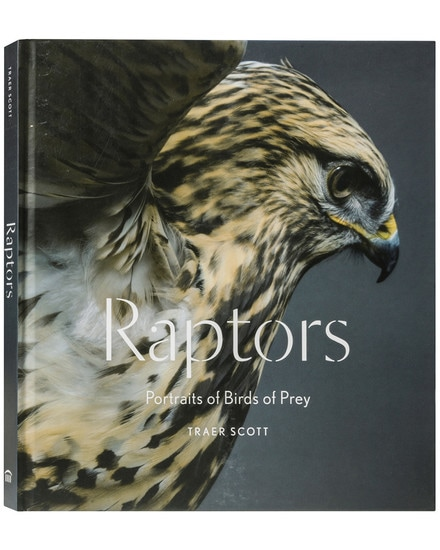 Raptors - Portraits of Birds of Prey Bildband A...