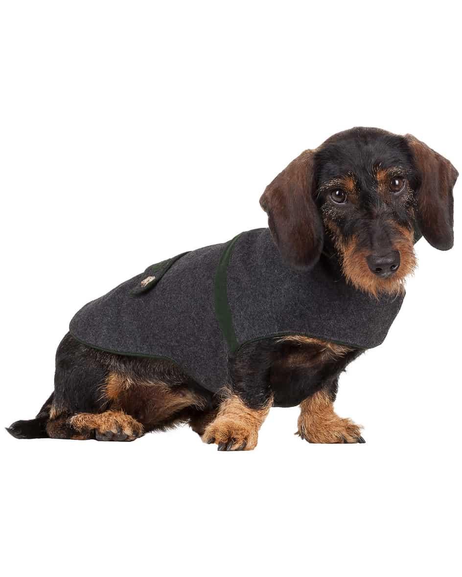 Hunde-Janker L
