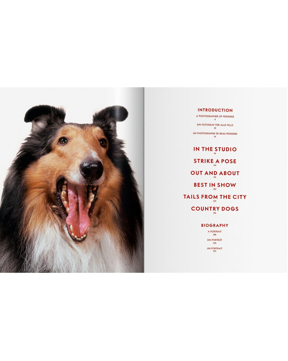 Dogs Buch Unisize